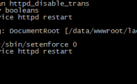 正在启动 httpd:Warning: DocumentRoot does not exist