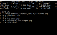 Apachetop 实时监测 web 服务器运行状态