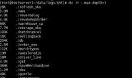 简记 linux 查找大文件夹