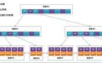 MySQL索引使用btree的一些思考